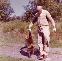 Barton Weighs Raccoon